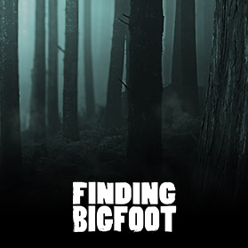Finding Bigfoot PC