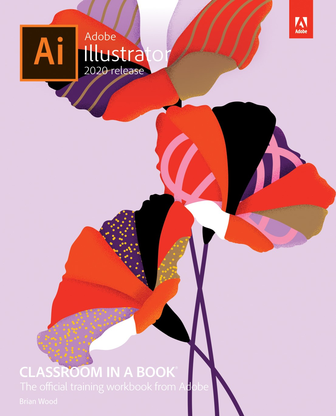 Adobe Illustrator 2020 PC